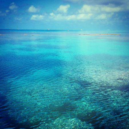 Lady Musgrave Island Photo