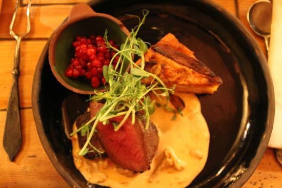 Aifur Krog & Bar: venison dinner