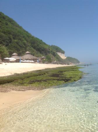 Karma Beach Bali Restaurant: The beach club