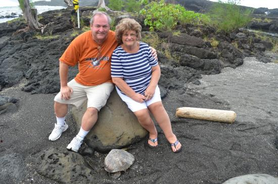 Aloha Tuesday Tours-Private Day Tours: One of the many turtles we saw at a secluded part of another one of the black sand beaches