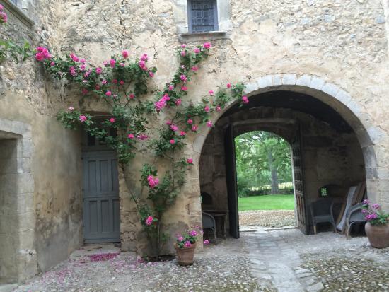 Chateau d'Esparron : photo5.jpg