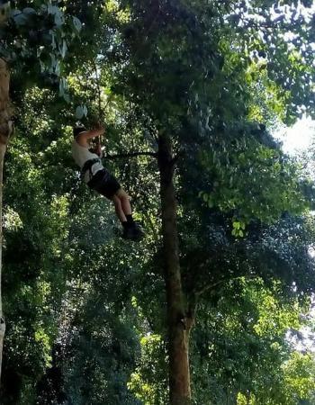 Stunning Bali Tours: treetop adventure