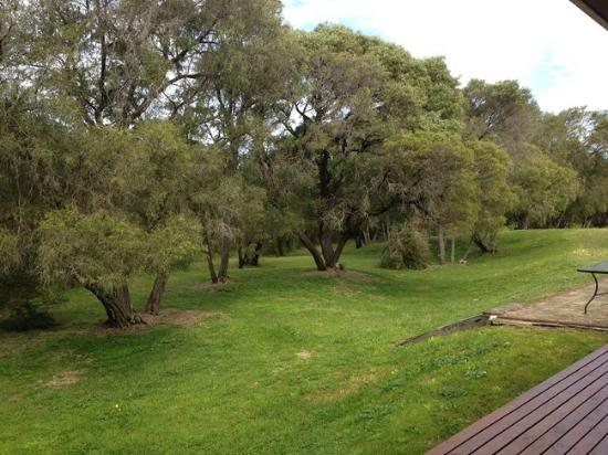 Emu Beach Chalets: Lush parkland from the patio at the front of the chalets.