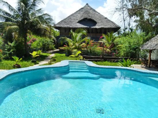 Kobe House : La piscina