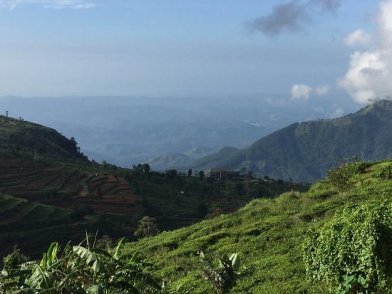 Hill Safari Eco Lodge Ohiya: Durch die großen Panoramascheiben