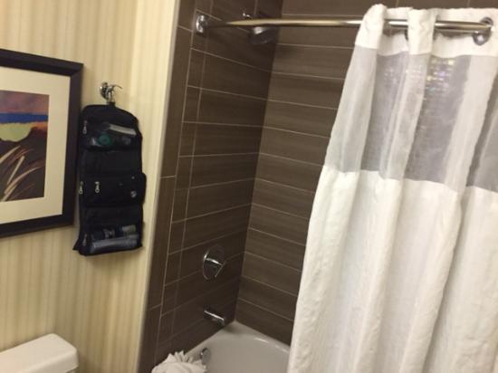 DoubleTree Suites by Hilton Orlando - Disney Springs Area: Bathroom