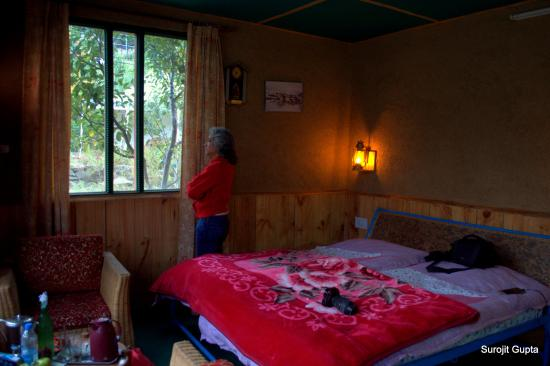 The Monk-Kalpa: The cozy interior of the cottage