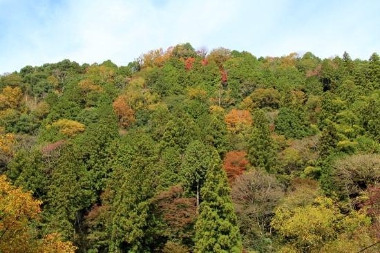 Mt. Iimori
