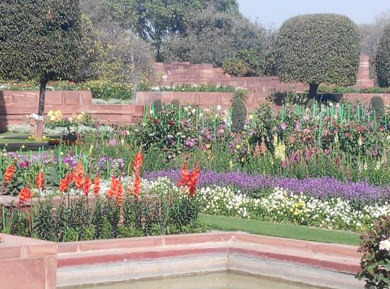 Mughal garden picture of mughal garden new delhi Mughal garden booking
