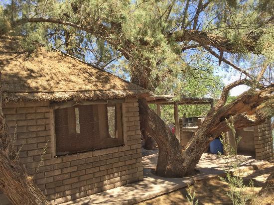 Kalahari River & Safari Co: Rustic river hut