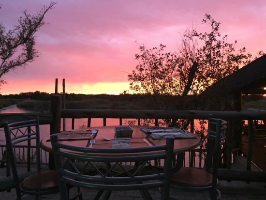 Kalahari River & Safari Co: eat with a magical view