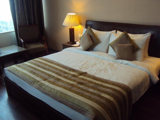 Comfort Inn Alstonia: Room