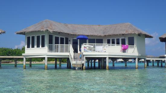 Chaaya Island Dhonveli Resort Reviews