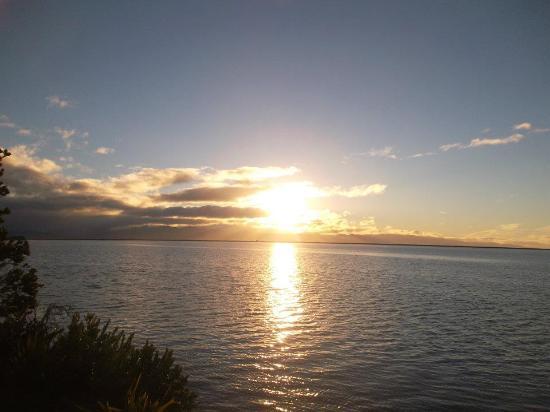 Tasman Bay Backpackers: Visuale all'alba