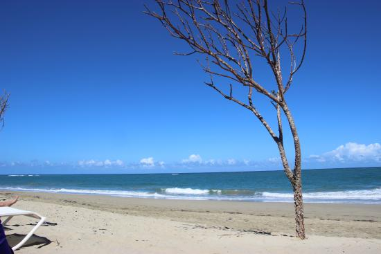 Ultravioleta Boutique Residences: the beach in front of the residences