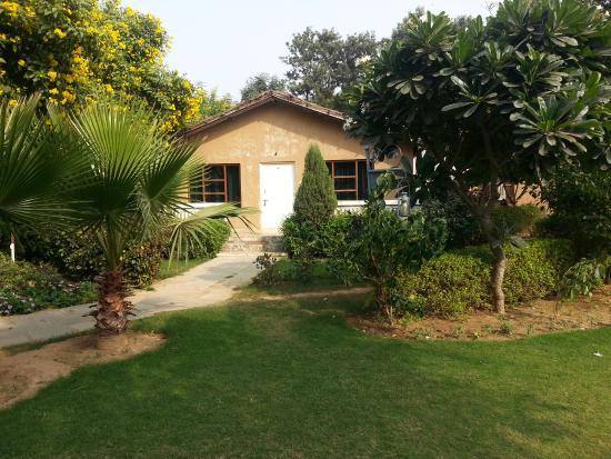 Botanix Nature Resort: 4 Bed Cottage