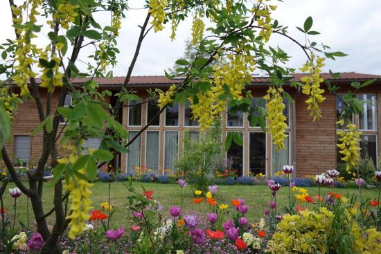 Maison Addama : Au printemps