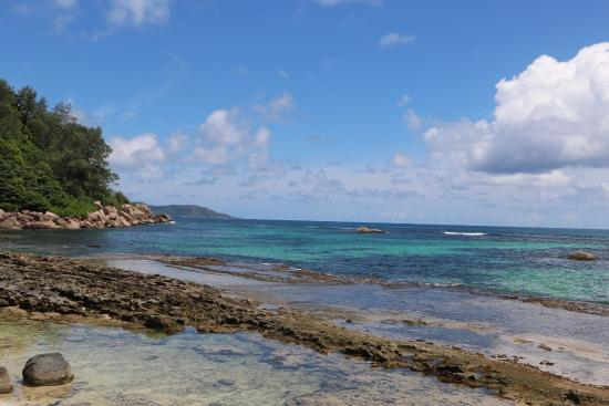 Donster Services Seychelles: photo1.jpg