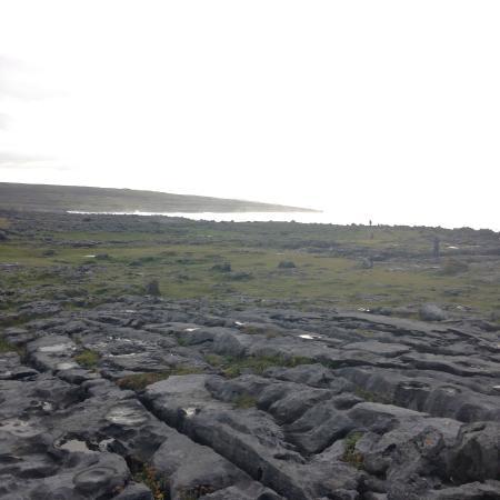Burren Wild Tours: Burren 2