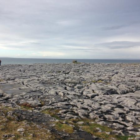 Burren Wild Tours: Burren 3 col sole