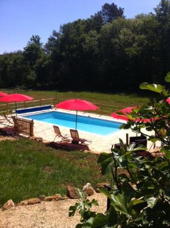 Castels, Francia: La piscine