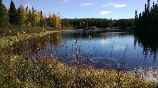 Pickle Lake, Kanada: Birch Bark Lodge