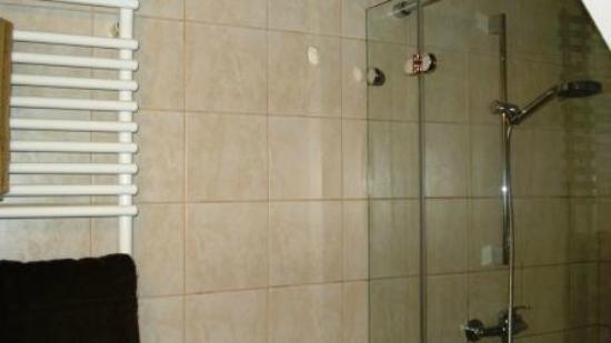 Cerkno, Eslovenia: massage shower apt 1