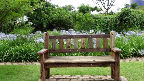 carpas e outros), patos e garças  Foto di Jardim Botanico, Jundiai