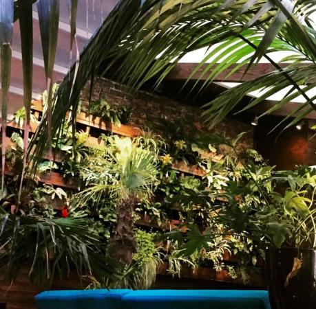 Restaurant Chez Max Dublin