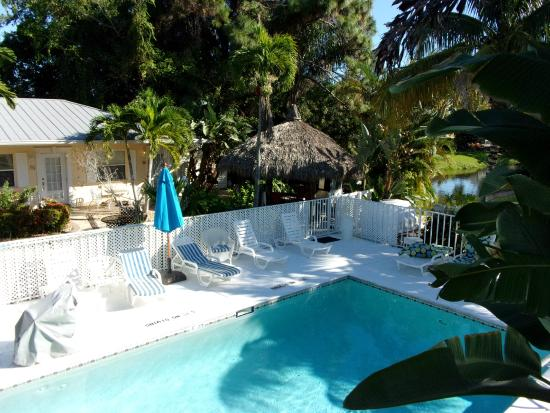 Marco Island Lakeside Inn : Sparkling heated outdoor pool