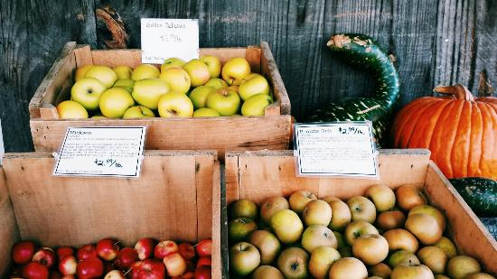Killdeer Farm Stand: Great variety of unique and delicious apples.