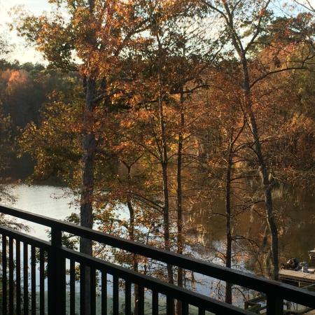 ... from balcony - Photo de Wyndham Vacation Resort Lake Marion, Santee