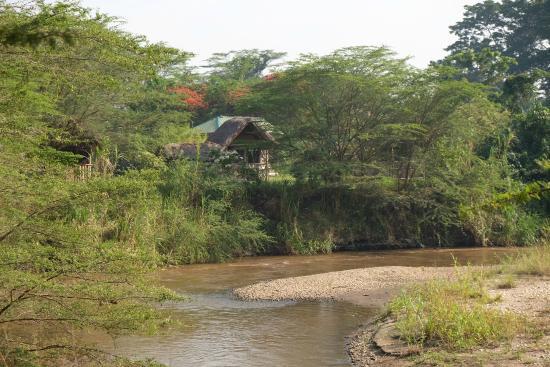 At The River Ishasha