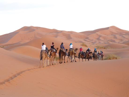 Activity Morocco Tours Private Day Tours