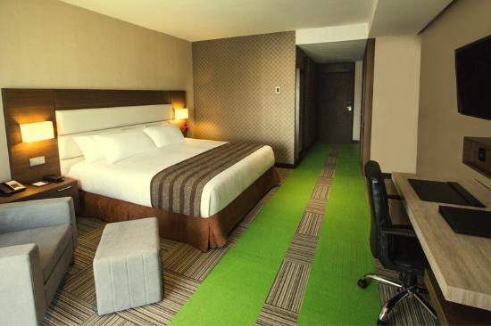 Eurobuilding Hotel & Suites Coro: Elegantes y Comodas Habitaciones diseñadas con un estilo único y la más moderna Tecnología.
