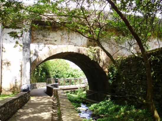Estacao Ecologica do Tripui: Linda ponte
