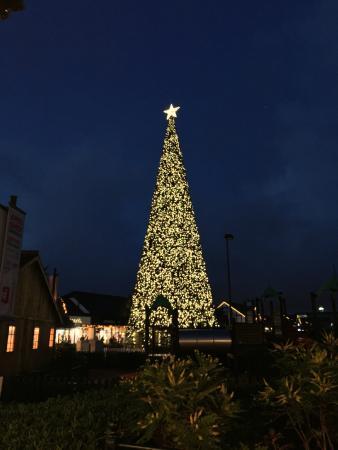Cheshire Oaks Designer Outlet: The lovely Christmas Tree! - The Lovely Christmas Tree! - Picture Of Cheshire Oaks Designer