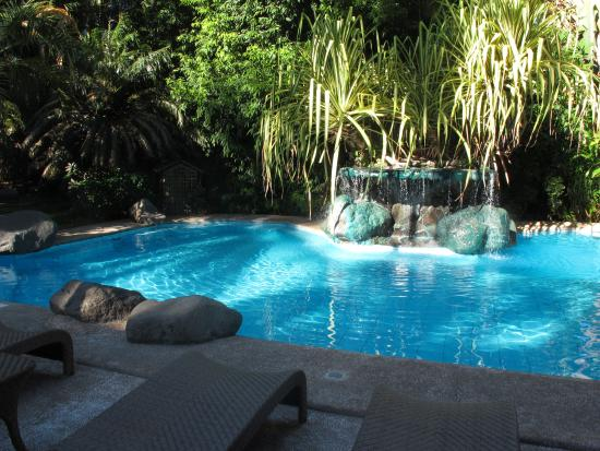 Pool picture of atlantis dive resorts dumaguete dauin - Hotels in dumaguete with swimming pool ...