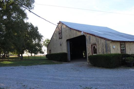 Green Acres Farm Bed and Breakfast: Find more animals in the barn
