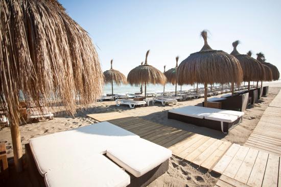 Cheap Lads Holidays >> Chiringuito - Picture of Marbella, Costa del Sol - TripAdvisor