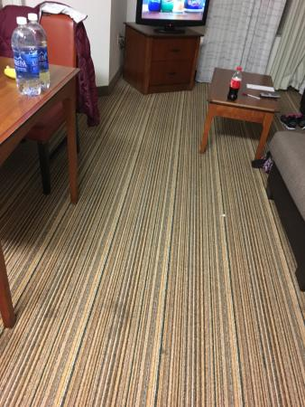 Residence Inn Indianapolis Carmel: Stains on the carpet.