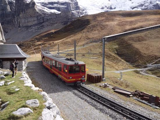 Гриндельвальд, Швейцария: のんびり鉄道が走ってます