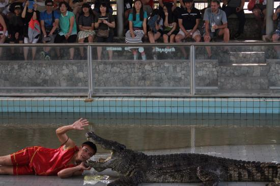 photo0.jpg - Picture of Samutprakan Crocodile Farm and Zoo, Bangkok - TripAdv...