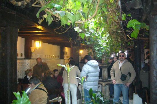 de tapas picture of gaona jardin burgos tripadvisor