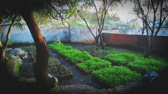 Hotel Molino: Le jardin des aromatiques