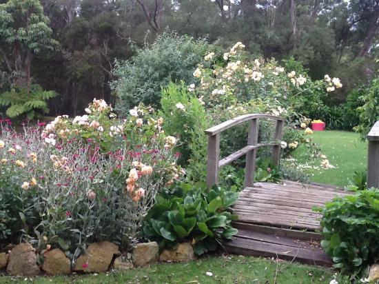 Willowleigh B&B: The Monet bridge in the gardens