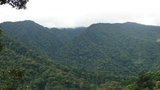 Dong Du Ethnic Voyage