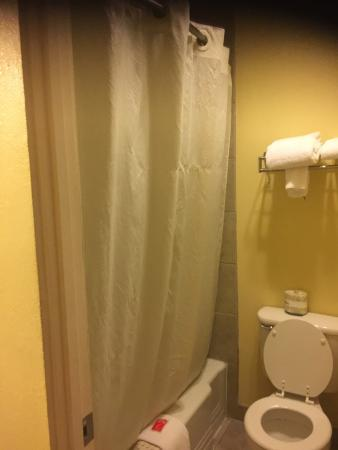 Econo Lodge Downtown: Bathroom