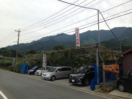 Yamazutono Street: 鳥越ぶどう園の前を走る山苞の道
