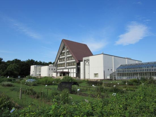 Naito Museum of Pharmaceutical Science and Industry